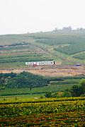 vineyard clos st landelin vorburg grand cru rouffach alsace france