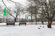 Green plastic bottles filled with food hang on branches for the benefit of wintering birds, left by locals in Letna Park Letenske Sady, on 18th March, 2018, in Prague, the Czech Republic.