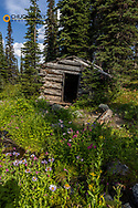 Remnants of old trapper cabin in China Basin in the Stillwater State Forest near Whitefish, Montana, USA
