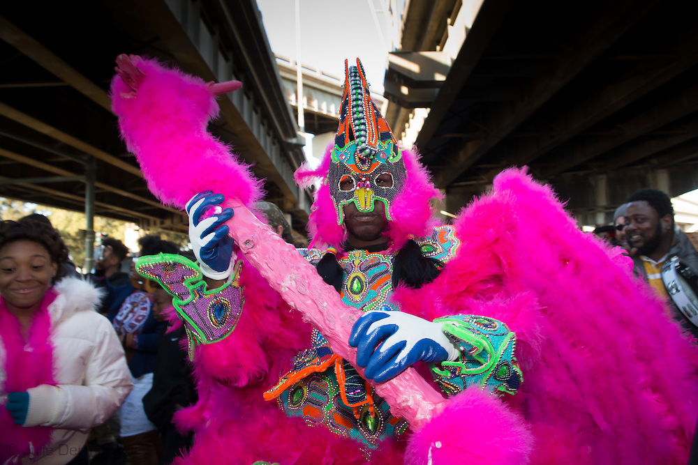 2/17/15, New Orleans, LA,  Big Chief, of the United Nation Mardi Gras Indian Tribe celebrates with his tribe on Mardi Gras Day.