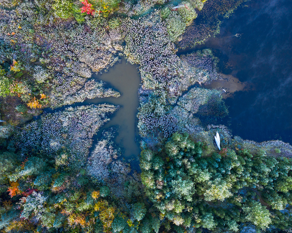 Aerial abstract of a lake shore with autumn color in Vermont.