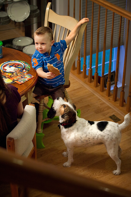 Wyatt Gliztow, 2, eats pizza with his family while the family dog, Darby, watches in Fort Dix, N.J., Sept. 17, 2011.