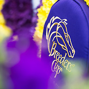 Breeders' Cup Friday