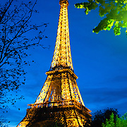 The Eiffel Tower illuminated at night against a deep blue sky of dusk.