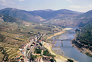Port wine production in Portugal c 1960  Douro river valley landscape vines growing on hillside terraces around the village of Pinhão