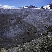 South Georgia Island, Glacier at St. Andrews Bay.