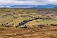 Roberton, Hawick, Scottish Borders, Scotland, UK. 9th March 2021. The south easterly view from Borthwickshiels near Roberton village in the Hawick hills.