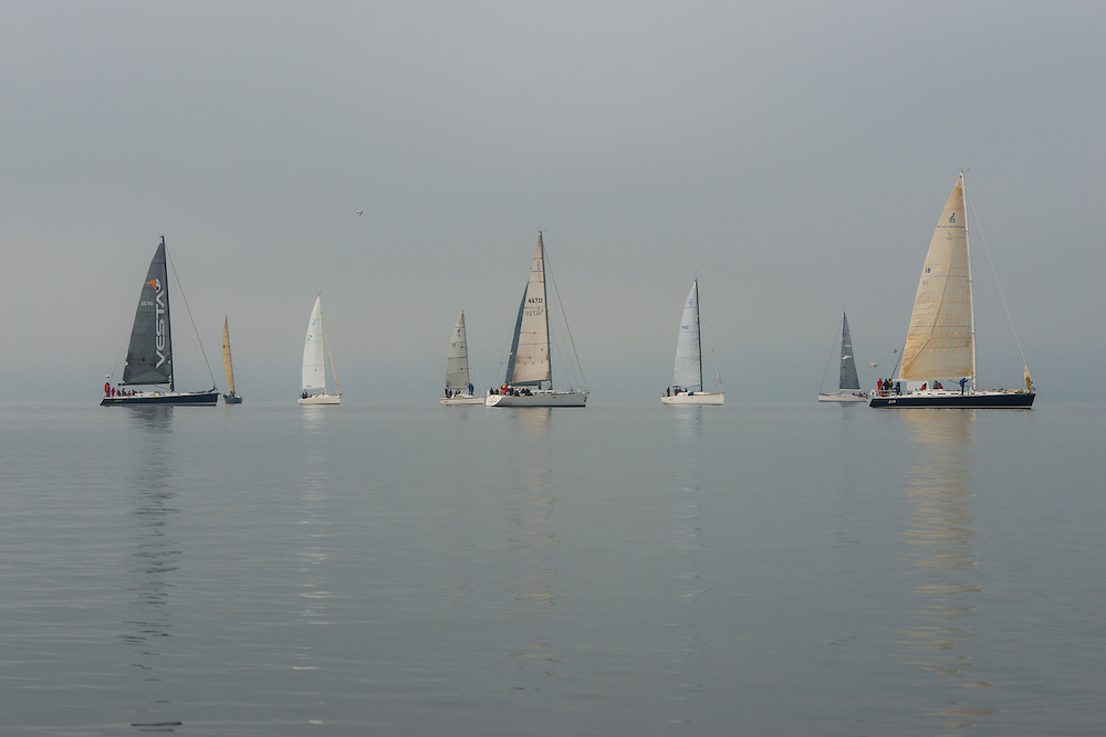 A regatta of sail boats on Puget Sound, just in front of Shilhole Marina, Seattle, Washington. Photo by William Drumm.