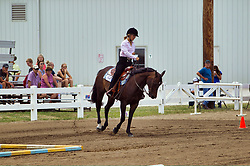 McLean County Fair - horsemanship competition