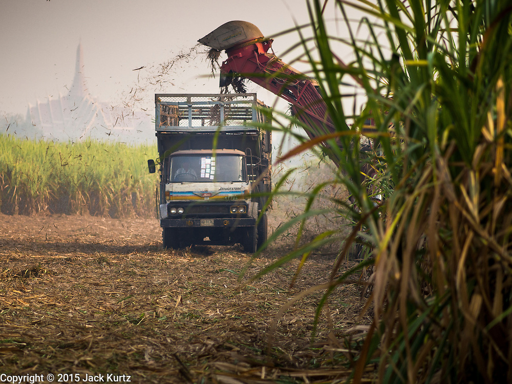 09 FEBRUARY 2015 - THA MAI, KANCHANABURI, THAILAND:  A mechanical sugarcane harvester clear cuts a field in Kanchanaburi province of Thailand. Wat Huai Ta Khian is in the background. Thailand is the world's second leading sugar exporter after Brazil. The 2015 sugarcane harvest in Thailand is expected to fall about 5% compared to the 2014 harvest because of a continuing drought in Southeast Asia. Brazilian production is also expected to fall this year because of ongoing drought in Brazil. Australia, the number 3 sugar exporter, is also expected to see a smaller harvest this year because of continuing draught in Australia.    PHOTO BY JACK KURTZ