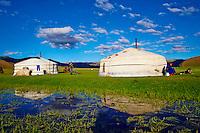 Mongolie, province de Bayankhongor, campement nomade // Mongolia, Bayankhongor province, nomad camp