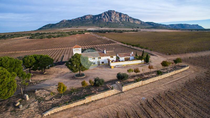 Bodegas Almanseñas y El Mugrón. Almansa. Albacete Aéreas Drone ©Antonio Real Hurtado / PILAR REVILLA