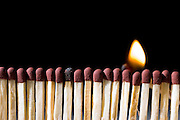 a line of unlit matches with a flame on a dark black background