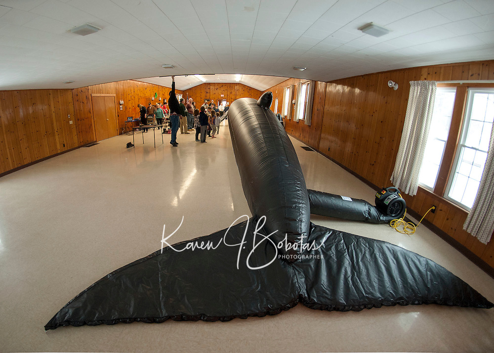 """The Leavitt Park Clubhouse had just enough room to contain """"Ladder"""" a 65 foot whale brought for Abby Gronberg's presentation with the Blue Ocean Society for Marine Conservation on Sunday afternoon.  (Karen Bobotas/for the Laconia Daily Sun)"""
