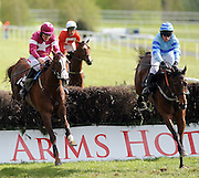 15-05-12: 'His Excellency', left, ridden by Davy Russell, defeats 'Cass Bligh', right, ridden by Barry Geraghty in the Irish Stallion Farms European Breeders Beginners Steeplechase  at Killarney Races on Tuesday evening.   Picture: Eamonn Keogh (MacMonagle, Killarney)