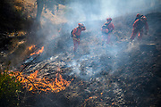 An inmate hand crew works the fire line to fight the Kincade Fire in Sonoma County near Geyserville on Thursday on Oct 24, 2019.