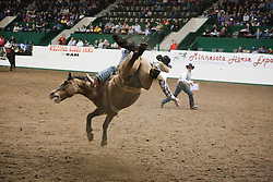 Images from the 2012 Minnesota Horse Expo Rodeo held in Warner Coliseum on the Minnesota State Fair Grounds on Sunday April 29th. The horse definitely seems to want the rider off its back.
