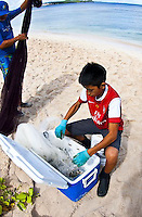 Guam Manahak, juvenille rabbitfish, with fishermen May 3, 2013.