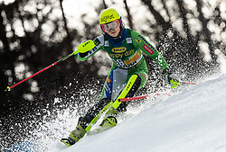 DVORNIK Neja of Slovenia competes during the 7th Ladies'  tSlalom at 55th Golden Fox - Maribor of Audi FIS Ski World Cup 2018/19, on February 2, 2019 in Pohorje, Maribor, Slovenia. Photo by Matic Ritonja / Sportida