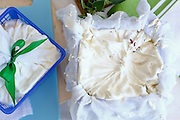 Home made white cheese. This image has a restriction for licensing in Israel