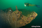diver swims over bow of the wreck of an American WWII era LCU ( Landing Craft Utility ) or LCT ( Landing Craft - Tank ) sunk in 8-21m of water in Triboa Bay, within Subic Bay, Philippines, MR 379