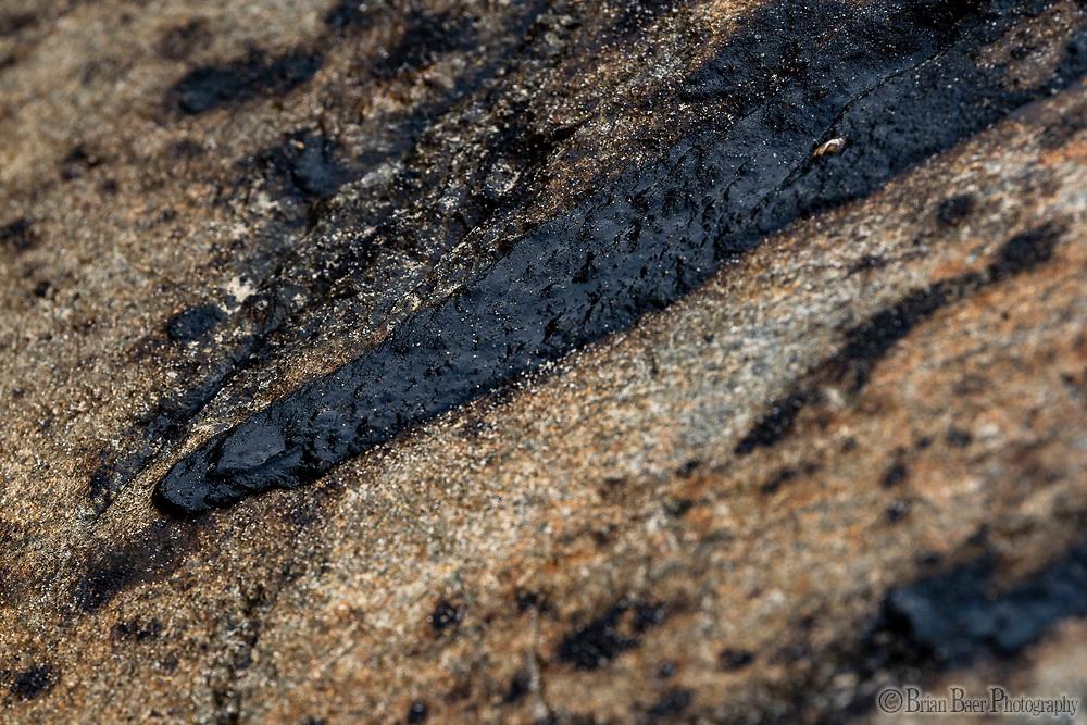 Huntington SB 10-06-2021_1581<br /> Oil on rocks near Talbert Marsh opening<br /> Huntington State Beach<br /> © 2021, California State Parks.<br /> Photo by Brian Baer