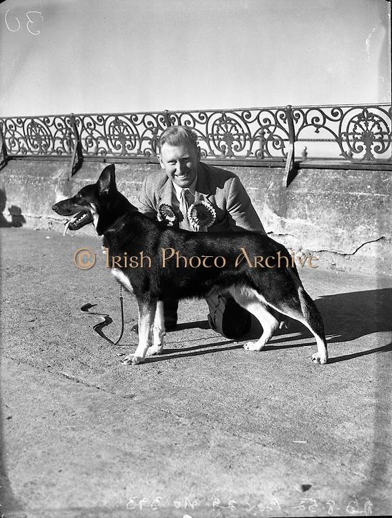 16/08/1952<br /> 08/16/1952<br /> 16 August 1952<br /> <br /> Mr William Murphy, Ballymoney Rd, Dervock, Co Antrim with his German Shepherd  'Koleen of Wolfhill' winner of Best in Show, Bray Dog Show