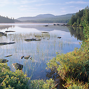 Still water on Third Roach Pond. Maine