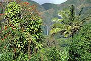 Hipuapua Falls, Halawa valley, Molokai, Hawaii, USA<br />