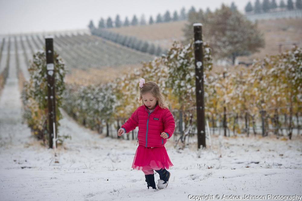 Early autunm snow at Walla Walla Vintners, Walla Walla, Washington