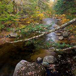 The Swift River in Tamworth, New Hampshire. Hemmenway State Forest.