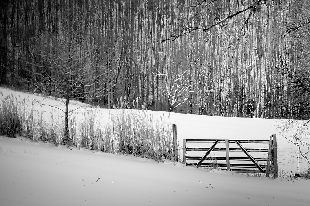 This shot was taken of a field in Fairmont WV.  The old metal gate set against a new coat of snow really set the stage for this shot.  The beauty of a fresh coat of snow has the ability transform something ordinary into something inspiring.