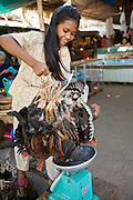 17 MARCH 2006 - KAMPONG CHHNANG, KAMPONG CHHNANG, CAMBODIA: A woman sells chickens in the market in the city of Kampong Chhnang in central Cambodia.Many people in Cambodia don't have refrigerators and shop for meat and produce almost every day. PHOTO BY JACK KURTZ