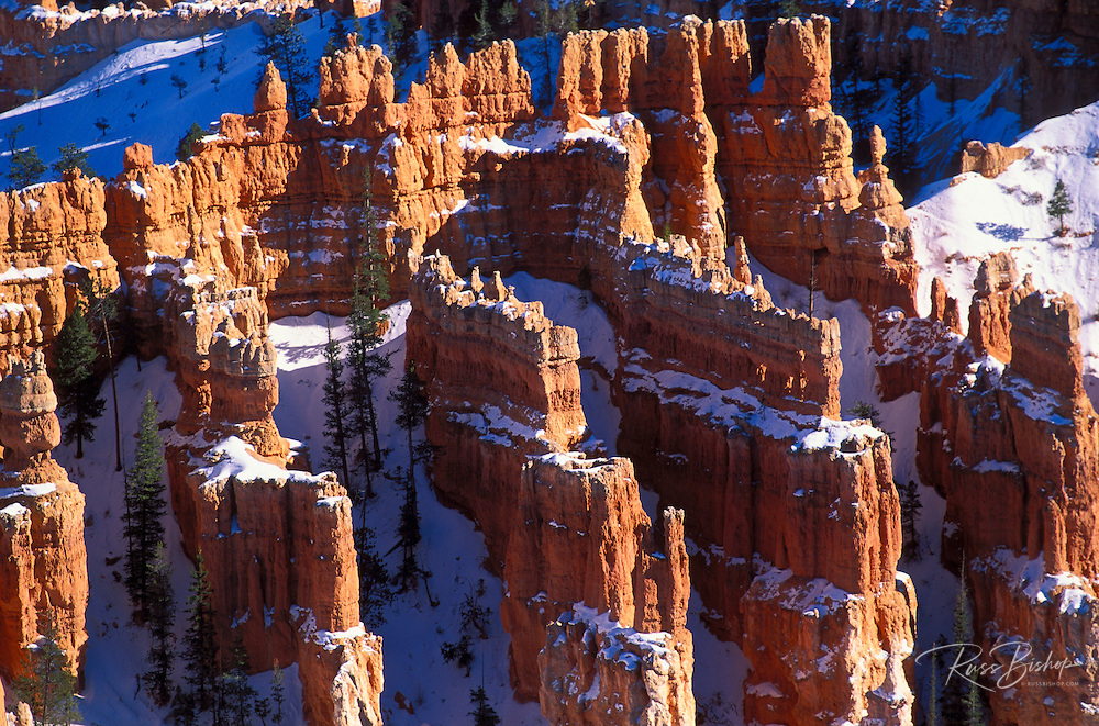 Afternoon light on eroded rock formations in winter below Bryce Point, Bryce Canyon National Park, Utah