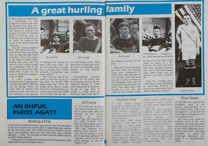 All Ireland Senior Hurling Championship Final, .Galway v Offaly, .06.09.1981, 09.06.1981, 6th September 1981,.Offaly 2-12, Galway 0-15,.06091981AISHCF,.