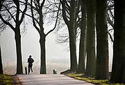 Nederland, Ooijpolder, 28-1-2019Op een weg met aan weerszijden bomen, loopt een man hard. De Ooijpolder ligt pal naast de stad en is populair bij lopers en andere recreanten.Foto: Flip Franssen