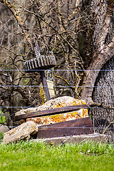 A piece of the old gearing, axle and stone that was once a part of Moore's Mill west of McLean Illinois