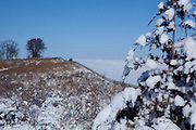 Rural Iowa fence line after an early season snow. A native prairy grass restoration.