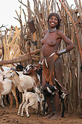 Hamer woman with a herd of goats Photographed in the Omo River Valley, Ethiopia