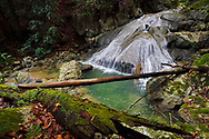 """Rainforest waterfall, Batenta Island, Raja Ampat, Western Papua, Indonesian controlled New Guinea, on then Science et Images """"Expedition Papua, in the footsteps of Wallace"""", by Iris Foundation"""