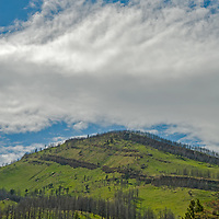 Burned trees cover a mountainside above the Boulder River near Big Timber, Montana.