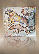Eastern Mediterranean Roman mosaics of Animals, late 5th - 6th century. Marble cubes, and limestone. Three animals are in the race, a dog, a lion and a pheasant. They belonged perhaps to a hunting scene which was a popular floor decoration in houses or they may illustrate the biblical theme of 'Peace of animals', found on the floors of the churches of the Eastern Roman provinces. inv 3672, Louvre Museum, Paris .<br /> <br /> If you prefer to buy from our ALAMY PHOTO LIBRARY  Collection visit : https://www.alamy.com/portfolio/paul-williams-funkystock/roman-mosaic.html - Type -   Louvre    - into the LOWER SEARCH WITHIN GALLERY box. Refine search by adding background colour, place, museum etc<br /> <br /> Visit our ROMAN MOSAIC PHOTO COLLECTIONS for more photos to download  as wall art prints https://funkystock.photoshelter.com/gallery-collection/Roman-Mosaics-Art-Pictures-Images/C0000LcfNel7FpLI .