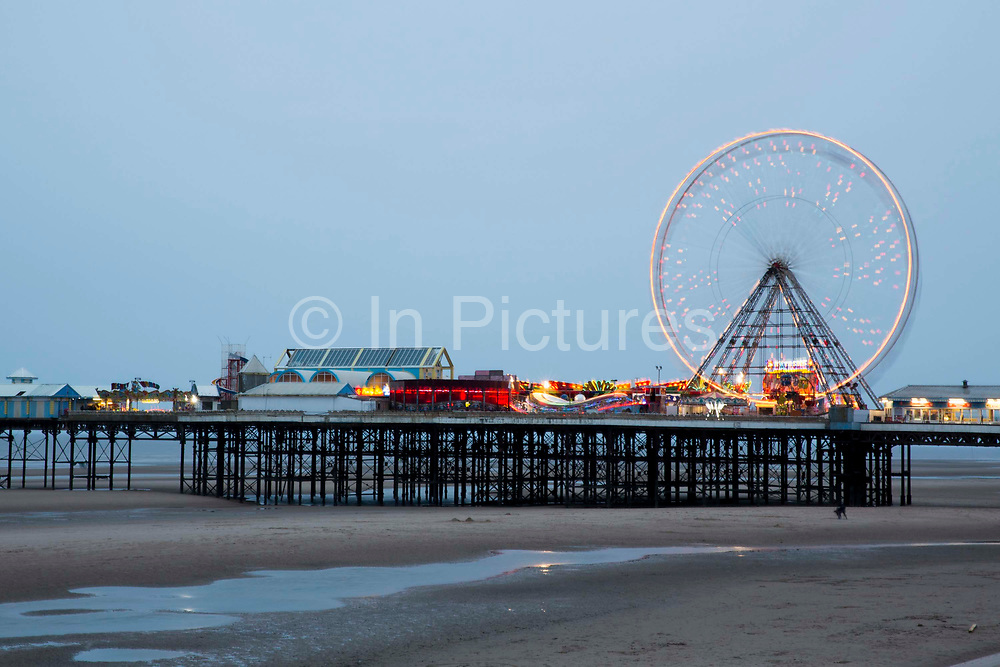 The Blackpool Big Wheel lit-up at dusk on Central Pier, Blackpool, Lancashire, England, United Kingdom.  Designed by John Isaac Mawson and opened in 1868, of the three piers, the Central Pier's emphasis is on fun.