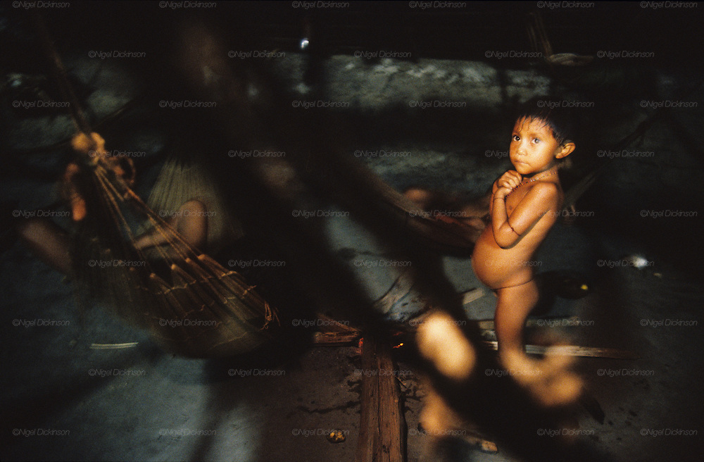 YANOMAMI INDIANS. South America, Brazil, Amazon. Living inside Molaca or Shabono traditional dwelling. Yanomami indians, a primitive tribe, living in the tropical rainforest, in communal traditional molaca dwellings. They are huntergatherers passing on their traditions and skills  from generation to generation. They are the guardians of their forest and its fragile ecosystem. Their lifestyle and their lands diminish every year in the face of encroaching deforestation, forest fires, campesinos who slash and burn primary rainforest, from cattle ranching, commercial plantations, gold and diamond mines.