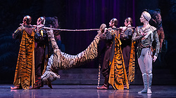 La Bayadere <br /> A ballet in three acts <br /> Choreography by Natalia Makarova <br /> After Marius Petipa <br /> The Royal Ballet <br /> At The Royal Opera House, Covent Garden, London, Great Britain <br /> General Rehearsal <br /> 30th October 2018 <br /> <br /> STRICT EMBARGO ON PICTURES UNTIL 2230HRS ON THURSDAY 1ST NOVEMBER 2018 <br /> <br /> <br /> Vadim Muntagirov as Solor <br /> A warrior <br /> <br /> <br /> <br /> Photograph by Elliott Franks Royal Ballet's Live Cinema Season - La Bayadere is being screened in cinemas around the world on Tuesday 13th November 2018 <br /> --------------------------------------------------------------------