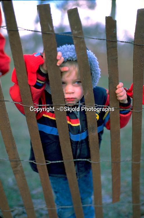 Boy age 4 looking through snow fence.  Minneapolis Minnesota USA
