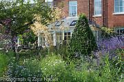 Perovskia 'Blue Spire', Stipa gigantea, Verbena bonariensis, Asters and Buxus - box pyramid with Garden Room - September