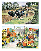 Everyboby who remembers the old days agrees that modern machinery has taken all the colour... out of country life.