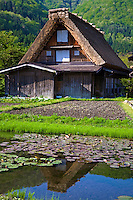 Gassho-zukuri houses were built of wooden beams combined to form a steep thatched roof that resembles two hands praying together.<br /> You can see houses such as these Shirakawago. These structures were built to suit the environment in Shirakawa and made to withstand heavy snowfall. The houses face north and south, to minimize wind resistance.