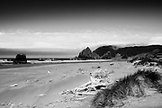 The Oregon coast near Gold Beach